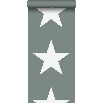 tapet stjärnor grågrönt