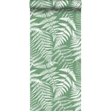 tapet ormbunkar grönt