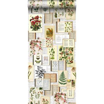 tapet XXL sidor ur en botanisk bok ljust krämfärgat, grönt, brunt och ockra