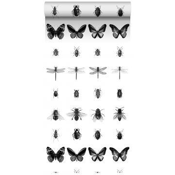 tapet XXL pennteckning av insekter svart och vitt