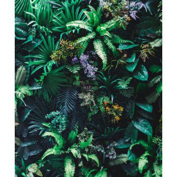 fototapet tropiska växter grönt