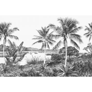 fototapet tropiskt landskap med palmer svart och vitt