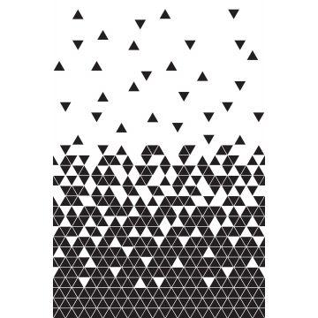 fototapet trianglar svart och vitt