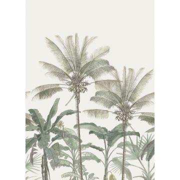 fototapet palmer ljusbeige och grågrönt