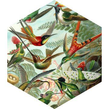 wallsticker fåglar tropiskt djungelgrönt