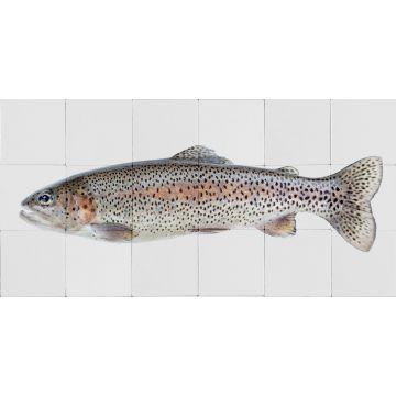 wallsticker fisk varmt grått och laxrosa