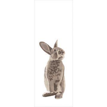 fototapet kanin brunt