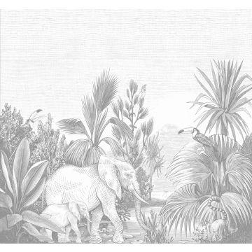 fototapet djungel grått
